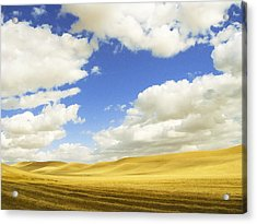Palouse Valley Acrylic Print by Anne Mott