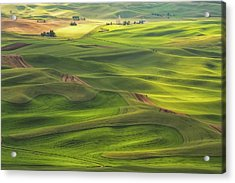 Palouse Views Acrylic Print