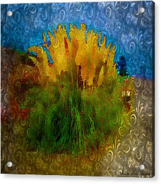 Acrylic Print featuring the photograph Pampas Grass by Iowan Stone-Flowers