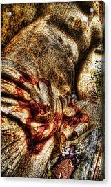 Pamphili Statue Detail 1 Acrylic Print by Brian Thomson