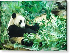 Acrylic Print featuring the painting Panda 1 by Lanjee Chee
