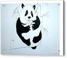Panda Bear And Bamboo Acrylic Print by Hal Newhouser