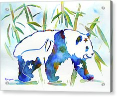 Panda Bear With Stars In Blue Acrylic Print