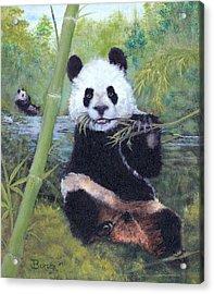 Panda Buffet Acrylic Print