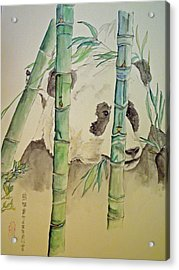 Acrylic Print featuring the painting Panda Eating  by Debbi Saccomanno Chan