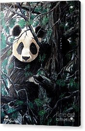 Panda In Tree Acrylic Print