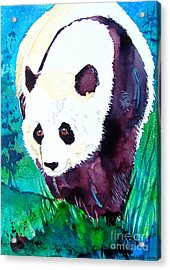 Acrylic Print featuring the painting Panda by Jo Lynch