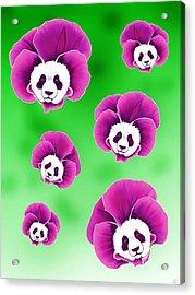 Panda Pansies Acrylic Print