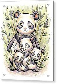 Endangered Animal Giant Panda Acrylic Print