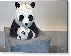 Pandaroras Box Acrylic Print by Jez C Self