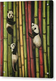 Acrylic Print featuring the painting Pandas Climbing Bamboo by Leah Saulnier The Painting Maniac
