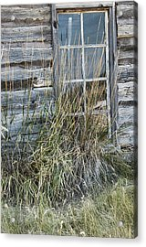 Panes Of The Past Acrylic Print