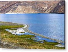 Pangong Tso, Ladakh, 2005 Acrylic Print
