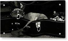 Panhandling Dog Acrylic Print by Julie Niemela