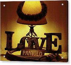 Acrylic Print featuring the photograph Paniolo Love by Pamela Walton