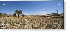 Panorama View Of Sicily With Smoking Etna Acrylic Print by Wolfgang Steiner