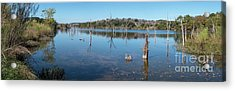 Panoramic View Of Large Lake With Grass On The Shore Acrylic Print