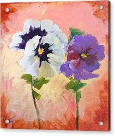 Pansies Acrylic Print