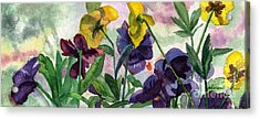 Pansy Field Acrylic Print by Lynne Reichhart