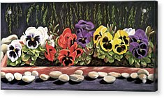 Pansy Palette Acrylic Print by Vanda Luddy