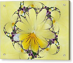 Pansy Swirls Acrylic Print
