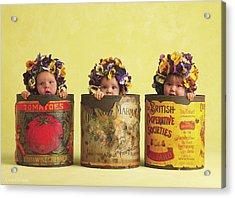 Pansy Tins Acrylic Print