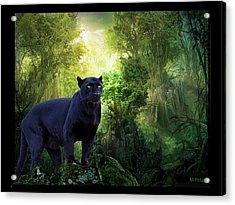 Panther Alert Acrylic Print