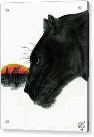 Panther At Dusk Acrylic Print by Tiphanie Erickson