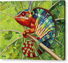 Panther Chameleon Acrylic Print