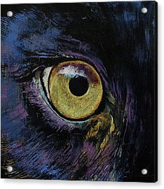 Panther Eye Acrylic Print by Michael Creese