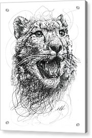 Leopard Acrylic Print by Michael Volpicelli