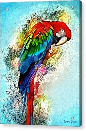 Papagaio - Da Acrylic Print