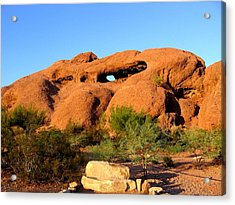 Acrylic Print featuring the photograph Papago Park by Michelle Dallocchio