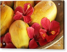 Papaya Fruit And Hibiscus Acrylic Print by Kyle Rothenborg - Printscapes