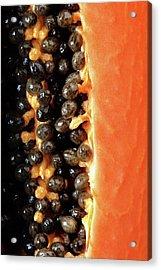 Papaya Fruit Halved Macro Acrylic Print