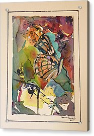 Acrylic Print featuring the painting Paper Butterfly by P Maure Bausch