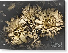 Acrylic Print featuring the photograph Paper Flowers by Jorgo Photography - Wall Art Gallery
