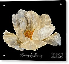 Paper Peony Loving By Giving Acrylic Print by Diane E Berry