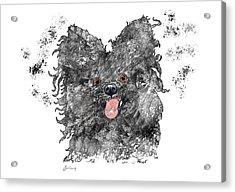 Please Pet Me Acrylic Print