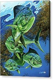 Papito Acrylic Print by Dennis Friel