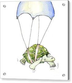 Parachute Turtle Acrylic Print by Fran Henig
