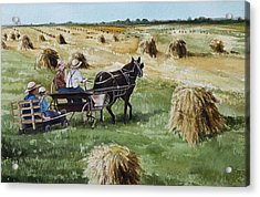 Parade Of Oats Acrylic Print by Kelly Morrow