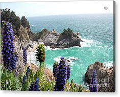 Paradise Cove Acrylic Print by Digartz - Thom Williams