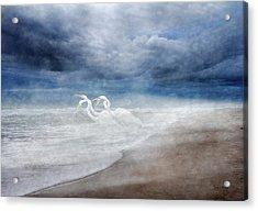 Paradise Dreamland  Acrylic Print by Betsy Knapp