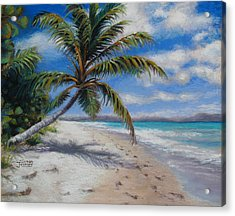 Paradise Found Acrylic Print by Susan Jenkins