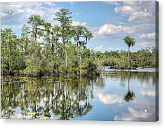 Paradise  Acrylic Print by JC Findley