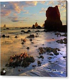 Paradise On Earth Acrylic Print