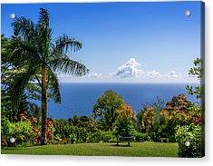 Paradise Picnic Acrylic Print