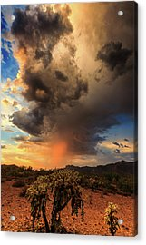Acrylic Print featuring the photograph Parched by Rick Furmanek