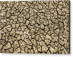 Parched Soil Acrylic Print by Todd Klassy